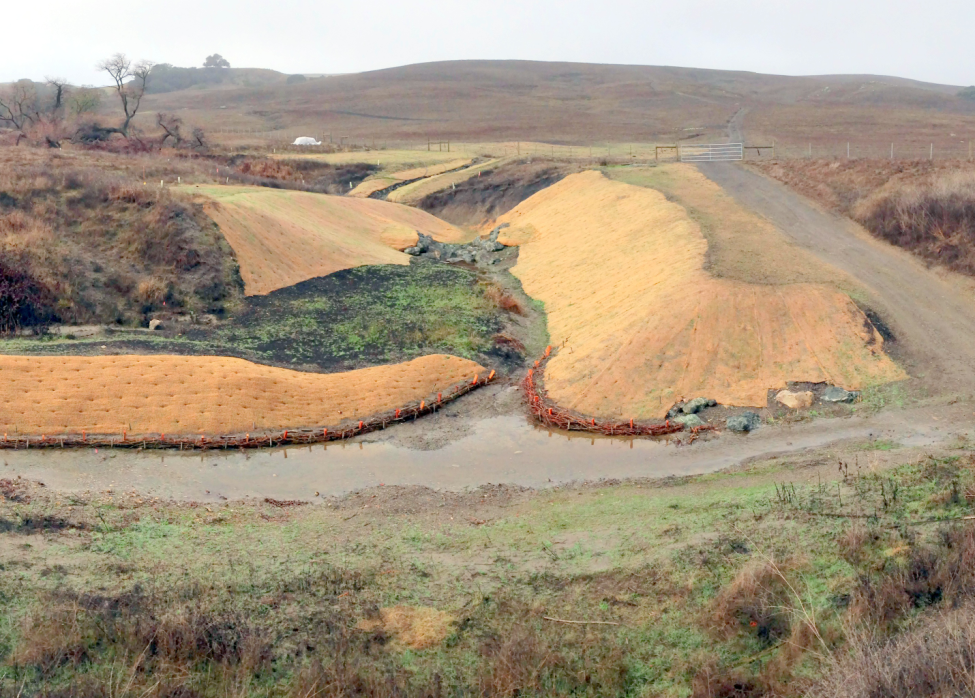 Tolay Creek Project