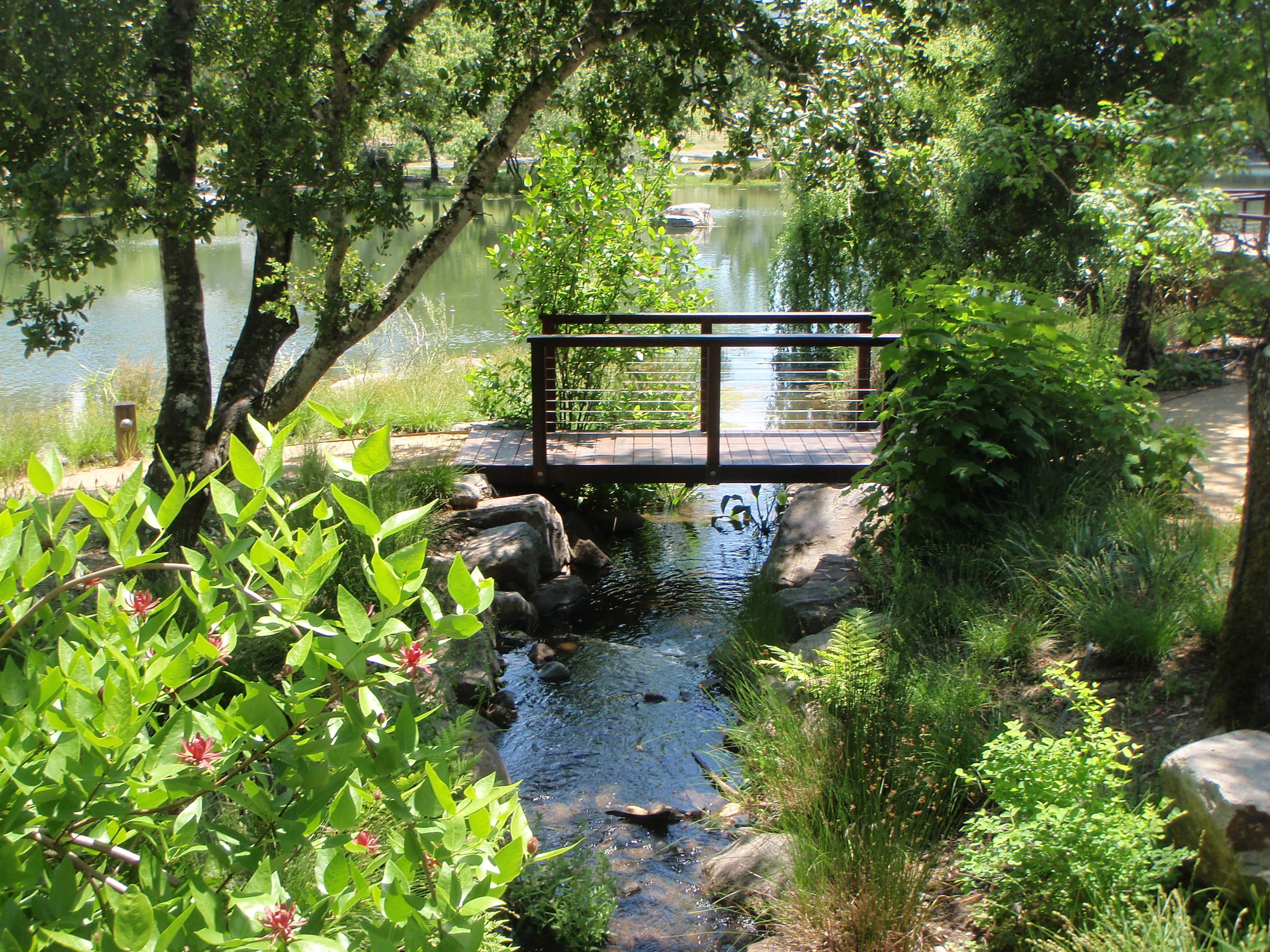 Natural ponds project categories prunuske chatham inc for Pond stream design